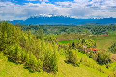 Paisagem fantástica da mola na Transilvânia, Holbav, Romênia Imagens de Stock Royalty Free