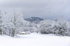 Paisagem francesa da vila sob a neve imagem de stock royalty free