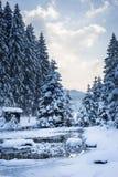 Paisagem fria da neve do inverno no rio Fotos de Stock Royalty Free