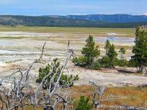 Paisagem geotérmica da bacia do geyser do parque de Yellowstone fotografia de stock