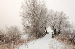 Paisagem holandesa do inverno com uma ponte de madeira pequena Fotografia de Stock Royalty Free