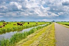 Paisagem holandesa típica Fotografia de Stock