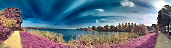 Paisagem infravermelha da fantasia bonita com as árvores em uma floresta e em campos e os lotes de elementos roxos e de um céu az imagens de stock royalty free