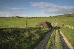 Paisagem inglesa bonita do campo sobre campos no por do sol Imagem de Stock