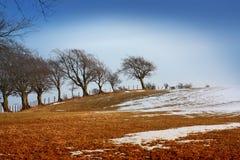 Paisagem invernal Fotos de Stock