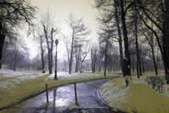 Paisagem invernal na noite Fotografia de Stock Royalty Free