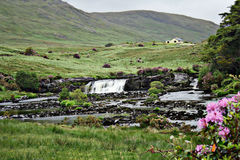 Paisagem irlandesa Fotos de Stock Royalty Free