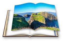 Paisagem irlandesa típica com a ponte suspendida em penhascos Irlanda do Norte - Reino Unido - Carrick um Rede - 3D rendem do imagem de stock