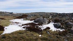 Paisagem islandêsa com pão do duende Fotografia de Stock Royalty Free