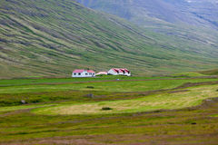 Paisagem islandêsa da natureza com montanhas e moradias Foto de Stock Royalty Free