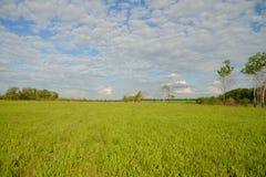 A paisagem lisa Foto de Stock Royalty Free
