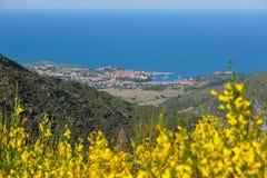 Paisagem litoral Collioure França da vila fotos de stock royalty free