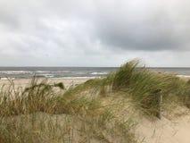 Paisagem litoral holandesa com Mar do Norte fotografia de stock