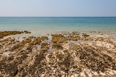 Paisagem litoral rochosa fotografia de stock