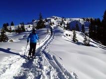 Paisagem mágica nos cumes - menina do inverno com sapatos de neve - Vorarlberg Áustria Europa fotos de stock