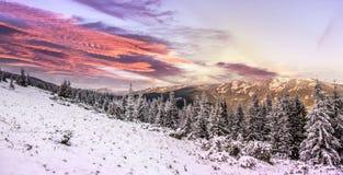 Paisagem majestosa do inverno nas montanhas Por do sol com as nuvens coloridas no céu, incandescendo na luz solar Imagens de Stock Royalty Free