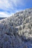 Paisagem majestosa do inverno sobre o céu azul imagens de stock