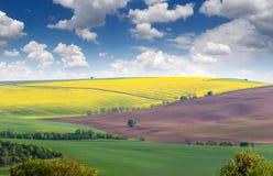 Paisagem maravilhosa dos campos em montes coloridos, tamanho grande Fotografia de Stock