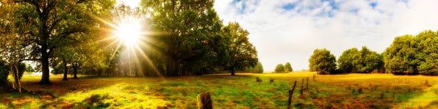 Paisagem maravilhosa no outono Fotos de Stock Royalty Free
