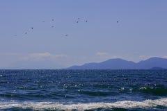 Paisagem marinha através da água azul às silhuetas dos montes e dos pássaros da montanha que voam sobre o mar imagens de stock royalty free