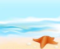 Paisagem marinha do vetor com uma estrela de mar Foto de Stock
