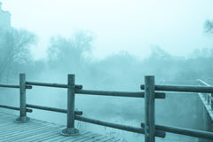 Paisagem misteriosa da névoa Foto de Stock