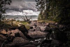 Paisagem misteriosa, escura - córrego da floresta entre rochas Imagens de Stock