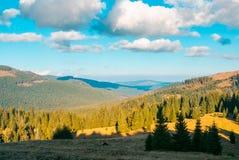Paisagem montanhosa bonita com floresta spruce fotografia de stock