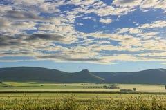 Paisagem montanhosa com o imaturo do campo de milho dominado por nuvens: Alta Murgia National Park, Apulia Itália foto de stock