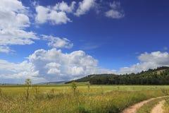 Paisagem montanhosa com o imaturo do campo de milho dominado por nuvens: Alta Murgia National Park, Apulia It?lia fotos de stock royalty free