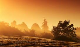 Paisagem Mystical no nascer do sol imagem de stock
