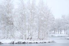 A paisagem não é lagoa imóvel Imagens de Stock