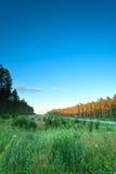 Paisagem na estrada asfaltada e na floresta do Polônia Fotos de Stock