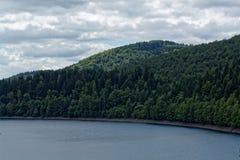 Paisagem na floresta de Thuringian Foto de Stock