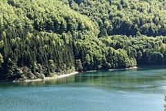 Paisagem na floresta de Thuringian Fotos de Stock Royalty Free