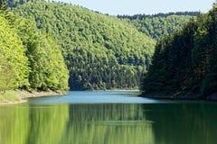 Paisagem na floresta de Thuringian Fotografia de Stock