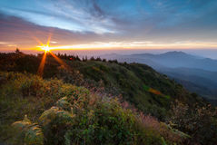 Paisagem na montanha de Inthanon Fotos de Stock Royalty Free
