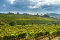 Paisagem na região do Chianti na província de Siena toscânia Italy foto de stock royalty free