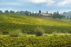 Paisagem na região do Chianti na província de Siena toscânia Italy fotografia de stock