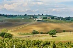 Paisagem na região do Chianti na província de Siena toscânia Italy imagens de stock royalty free