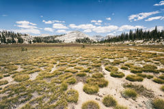 Paisagem na serra Nevada Mountains Foto de Stock Royalty Free