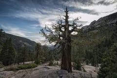 Paisagem na serra Nevada Mountains Foto de Stock