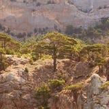 Paisagem nas montanhas Imagens de Stock