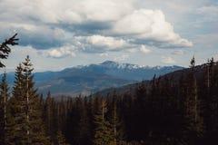 Paisagem nas montanhas Carpathians Ucrânia Fotografia de Stock