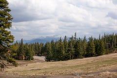Paisagem nas montanhas Carpathians Ucrânia Fotos de Stock Royalty Free