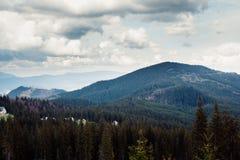 Paisagem nas montanhas Carpathians Ucrânia Foto de Stock Royalty Free