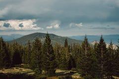 Paisagem nas montanhas Carpathians Ucrânia Imagens de Stock Royalty Free