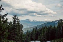 Paisagem nas montanhas Carpathians Ucrânia Imagens de Stock