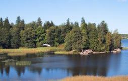 Paisagem natural Rio profundo em um dia de verão ensolarado Imagem de Stock Royalty Free