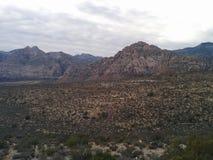Paisagem nebulosa do deserto da montanha com plantas imagens de stock